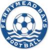 Ferrymead Bays Eagles Logo
