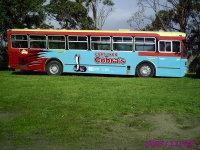 Cobra Bus