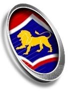 Huonville Lions U13