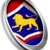 Huonville Lions U13 Logo