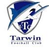 Tarwin Logo