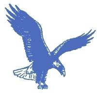 Eaglehawk