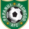 Papanui Redwood Black Logo