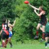 2009 Round 12: Etobicoke v Tor. Dingo's