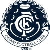 Catani Logo
