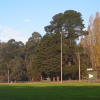 Y2010/04/03 - Where the new netball court is to be built April & May, 2010
