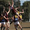 Round 17 Lower Plenty v Whittlesea