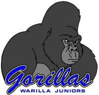 Warilla Barrack Point Gorillas