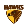 BIG RIVER HAWKS  Logo