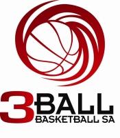 Basketball Net Logo Logo  3BallSA basketball net