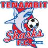 Tenambit Sharks FC 13/01-2018 Logo