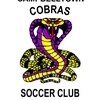 CAMPBELLTOWN COBRAS UNDER 8 GOLD Logo