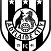 Adelaide City Black Logo