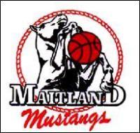 Maitland Mustangs