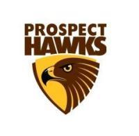 news prospect junior football club sportstg