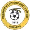 Cessnock City Hornets FC Logo