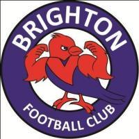 Brighton Blue U13