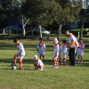 2011 mini teams - u6, u7 and u8