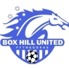 Box Hill United Pythagoras SC Green Logo