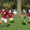 2011 Maori Hill Junior Football gallery