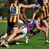 2012 R4 - Box Hill Hawks v Port Melbourne