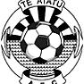 Te Atatu Patriots 13/2 Logo