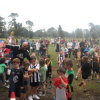 week 2 2012 Bonbeach Auskick action shots