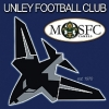 Unley Mercedes Jets Logo