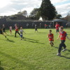 Auskick action week 3 including half time hero's