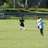 Kids to Kangaroos - Victoria Park, Picton