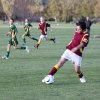 Maori Hill JFC 13 Maroon 2012