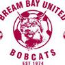 Bream Bay United A 9th 2012 Logo