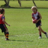 Under 8 Coolum Blue V Noosa Red 27.5.12
