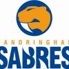 Sandringham Logo