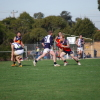 Round 8 - Reserves Diggers v Melton Centrals 2.6.2012