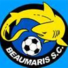 Beaumaris Panthers Logo