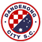 Dandenong City SC White Logo
