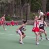 W2012/08/25 vs Healesville (H) 1