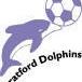 Stratford Dolphins FC