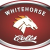 Whitehorse Colts Logo