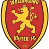 Wollongong United Logo
