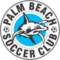 Palm Beach Soccer Club  - Gold Coast