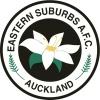 Eastern Suburbs AFC (NRFLP) Logo