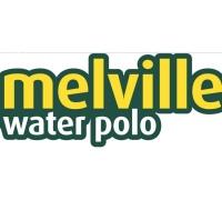 Melville Sharks