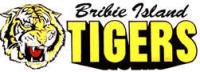 Bribie FC Yellow