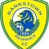 Bankstown Berries Logo