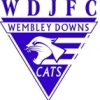 Wembley Downs Yr4s Cats White Logo