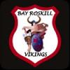 BAY ROSKILL BLACK Logo