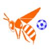 Kempsey Hornets - NJ12 Logo