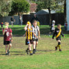 Auskick action round 3 2013